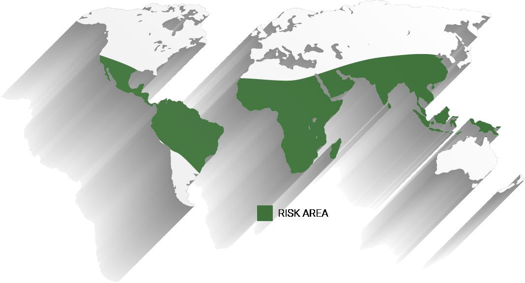 Cholera risk areas